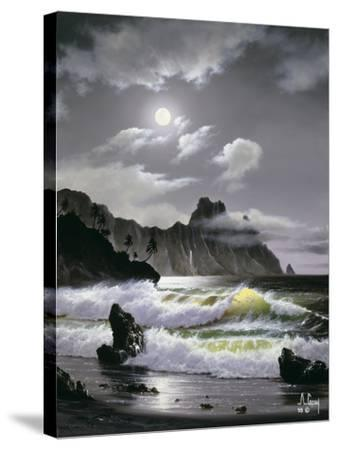 2352T0-Anthony Casay-Stretched Canvas Print