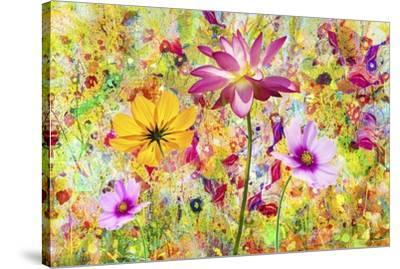 Flower Art A9-Ata Alishahi-Stretched Canvas Print