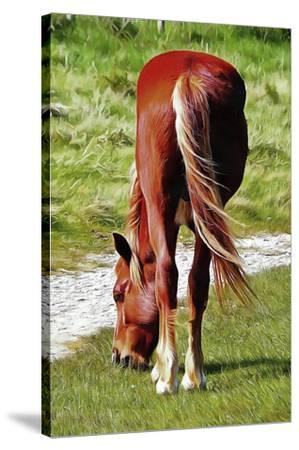 Graceful Grazing-Dorothy Berry-Lound-Stretched Canvas Print