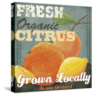 Citrus-Fiona Stokes-Gilbert-Stretched Canvas Print