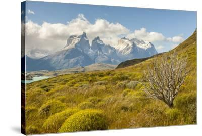 Chile, Patagonia. Lake Pehoe and The Horns mountains.-Jaynes Gallery-Stretched Canvas Print
