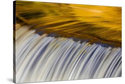 Golden Middle Branch of the Ontonagon River, Bond Falls Scenic Site, Michigan USA-Chuck Haney-Stretched Canvas Print