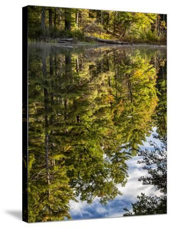 USA, New Hampshire, White Mountains, Reflections in Red Eagle Pond-Ann Collins-Stretched Canvas Print