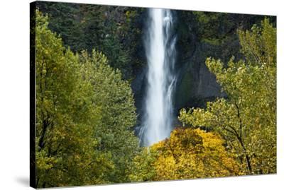 Autumn, Multnomah Falls, Columbia Gorge, Oregon, USA-Michel Hersen-Stretched Canvas Print