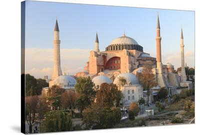 Turkey, Istanbul. Sultan Ahmet Mosque, Rooftop view.-Emily Wilson-Stretched Canvas Print