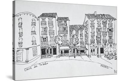 Calle de Toledo shopping street, Madrid, Spain-Richard Lawrence-Stretched Canvas Print