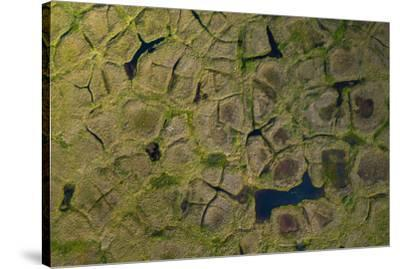 Natural polygonal shapes appear across the tundra landscape as a result of permafrost melt-Jeffrey Kerby-Stretched Canvas Print