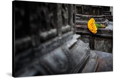 A bouquet of yellow flowers at the stone columns of Swayambhunath.-Martin Edstrom-Stretched Canvas Print