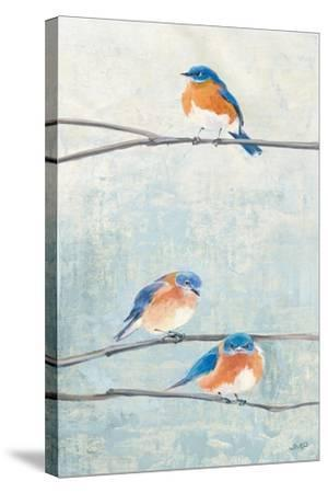 Hanging Out II-Julia Purinton-Stretched Canvas Print