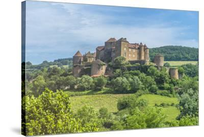 Berze Castle, Burgundy, France-Jim Engelbrecht-Stretched Canvas Print