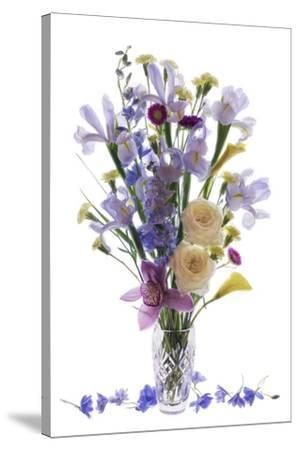Usa, Florida, Celebration, A Vase of Blooming Flowers-Hollice Looney-Stretched Canvas Print