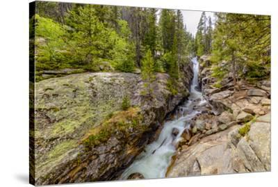 USA, Colorado, Rocky Mountain National Park. Waterfall and river cascade.-Jaynes Gallery-Stretched Canvas Print