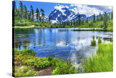 Picture Lake Evergreens Mount Shuksan Mount Baker Highway Snow Mountain Trees Washington Pacific No-William Perry-Stretched Canvas Print