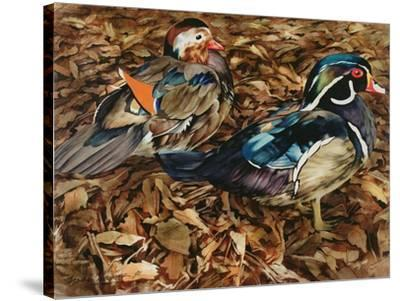 Carolonia Ducks, 1991-Sandra Lawrence-Stretched Canvas Print