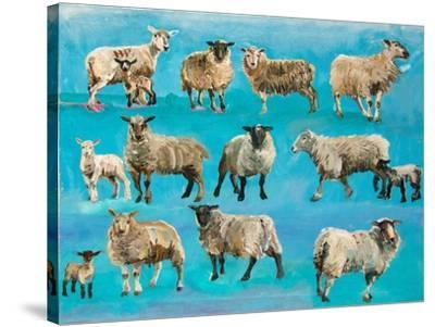 Counting Sheep-Alex Williams-Stretched Canvas Print