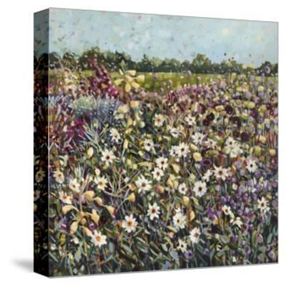 Late Summer Garden II, 2017-Anne-Marie Butlin-Stretched Canvas Print