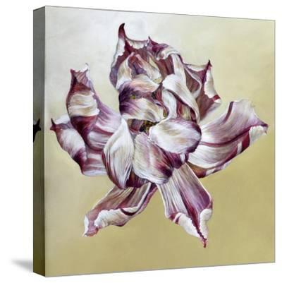 Tulipa, 2013-Odile Kidd-Stretched Canvas Print