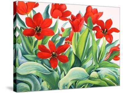Madame Lefeber Tulips-Christopher Ryland-Stretched Canvas Print