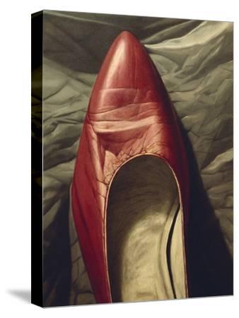 Shoe-like-Robert Burkall Marsh-Stretched Canvas Print