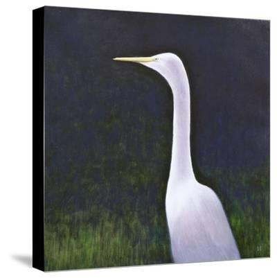 White Egret-Lincoln Seligman-Stretched Canvas Print