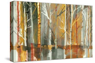 Sunset-PI Studio-Stretched Canvas Print
