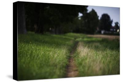 small path through a meadow-Benjamin Engler-Stretched Canvas Print