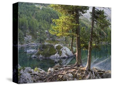 Lago di Saoseo, Grisons, Switzerland-Michael Jaeschke-Stretched Canvas Print