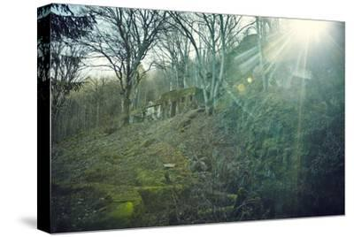 Sunray and remains of a defensive wall of a bunker on a mountain in a wood in winter in Alsace-Axel Killian-Stretched Canvas Print