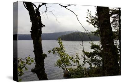 Wild landscape, Lelång Lake, Dalsland, Götaland, Sweden-Andrea Lang-Stretched Canvas Print