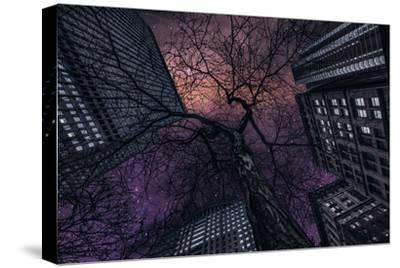 Interstelar-Jackson Carvalho-Stretched Canvas Print
