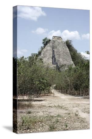 The 'Nohoch Mul' pyramid at Coba, Yucatan, Mexico, Maya, 6th-9th century-Werner Forman-Stretched Canvas Print