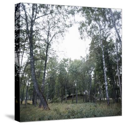 Viking burial mound, Fjord of Oslo, Norway-Werner Forman-Stretched Canvas Print