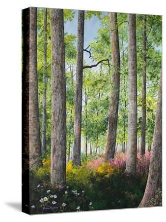 Enchanted Forest-James Redding-Stretched Canvas Print
