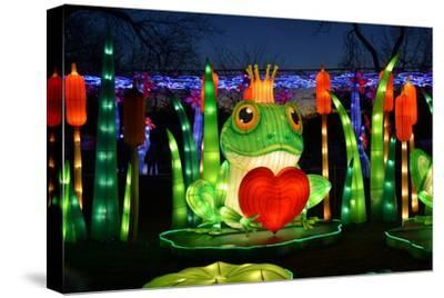Winter Lantern Festival, Frog and Heart, 2018-Anthony Butera-Stretched Canvas Print