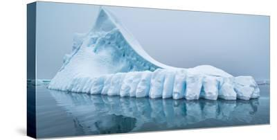 Icebergs floating in the Southern Ocean, Antarctic Peninsula, Antarctica-Panoramic Images-Stretched Canvas Print