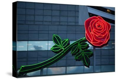 Neon rose, Waterfront Park, Portland, Oregon, USA-Panoramic Images-Stretched Canvas Print