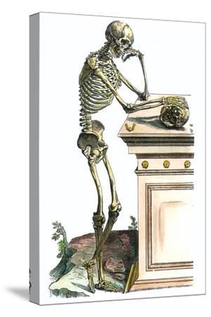 Vesalius: Skeleton, 1543-Andreas Vesalius-Stretched Canvas Print