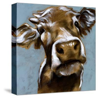 Cow Kisses I-Jennifer Parker-Stretched Canvas Print