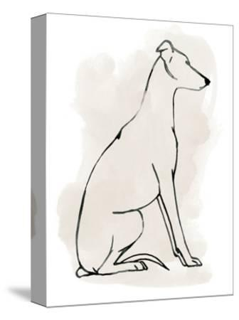 Greyhound Sketch I-Grace Popp-Stretched Canvas Print