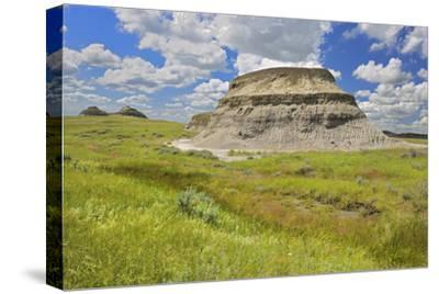 Canada, Saskatchewan, Grasslands National Park. Killdeer Badlands formations.-Jaynes Gallery-Stretched Canvas Print