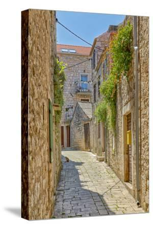 Croatia, Stari Grad. Cat in town street.-Jaynes Gallery-Stretched Canvas Print