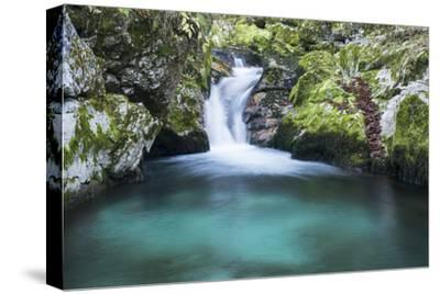 Slovenia. Small stream of pure mountain water cascades down mossy rocks.-Brenda Tharp-Stretched Canvas Print