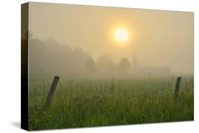 Canada, Ontario, Bourget. Farm field at sunrise in fog.-Jaynes Gallery-Stretched Canvas Print