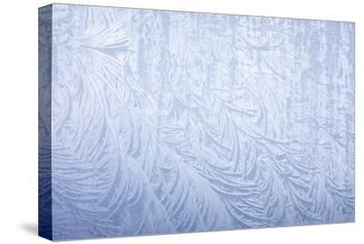 Frost on automobile silver fender-Darrell Gulin-Stretched Canvas Print