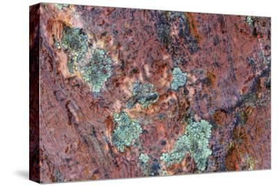 Large naturally polished rock with lichen, Lower Deschutes River, Central Oregon, USA-Stuart Westmorland-Stretched Canvas Print