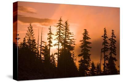 Sunrise scenic views near Timberline lodge, Lolo Pass, Mt. Hood Wilderness Area, Oregon, USA-Stuart Westmorland-Stretched Canvas Print