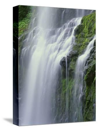 OR, Willamette NF. Three Sisters Wilderness, Lower Proxy Falls displays multiple cascades-John Barger-Stretched Canvas Print