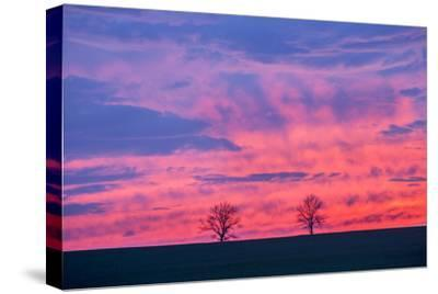 Sunset. Marion County, Illinois.-Richard & Susan Day-Stretched Canvas Print