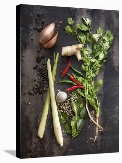 Vegetables-1x #NAME?-Stretched Canvas Print