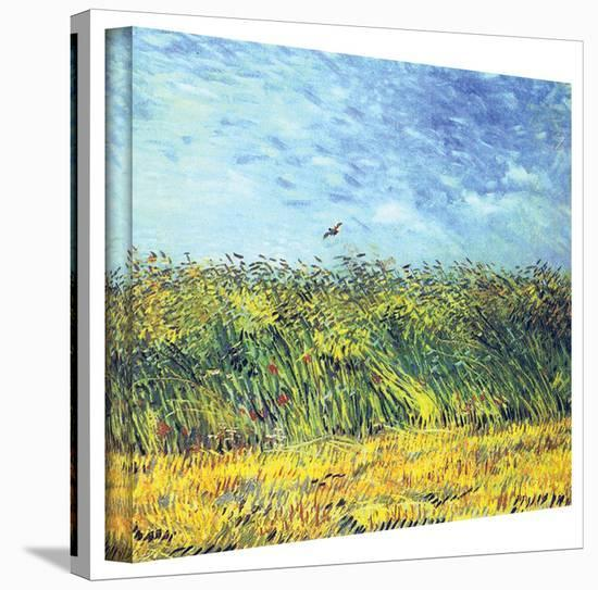 Vincent van Gogh 'Green Wheat Fields' Wrapped Canvas Art-Vincent van Gogh-Gallery Wrapped Canvas
